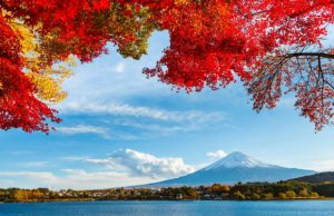 Tour Nhật Bản: Tokyo – Fuji – Nagoya -Kyoto – Osaka 6N5D