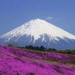 Cập nhật giá vé máy bay đi Nhật Bản tháng 8