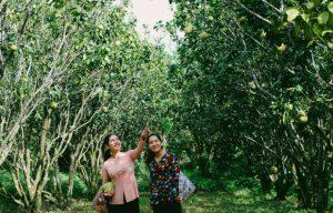 Khám phá 2 khu du lịch Cồn Ấu – Cồn Sơn nổi tiếng ở Cần Thơ