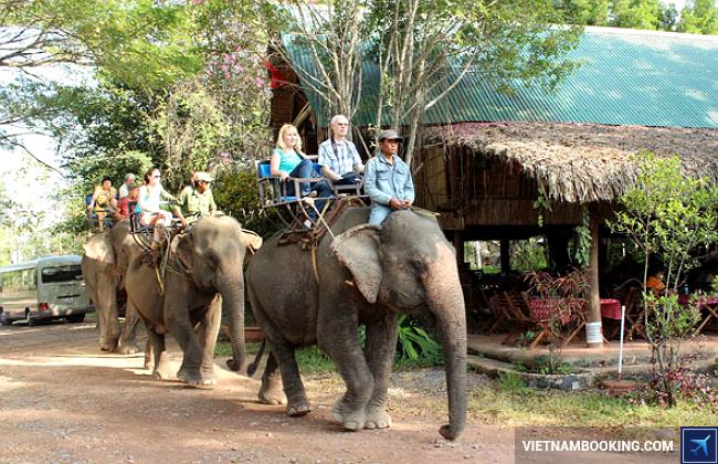 Kết quả hình ảnh cho cưỡi voi site:vietnambooking.com