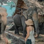 Tour du lịch Tây Nguyên 4 ngày 3 đêm | Buôn Mê Thuột – Pleiku