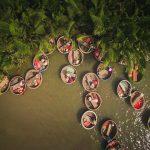 Đến du lịch Hội An khám phá rừng dừa Bảy Mẫu