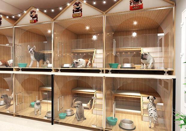 khách sạn cho phép vật nuôi, không gian dành riêng cho thú cưng