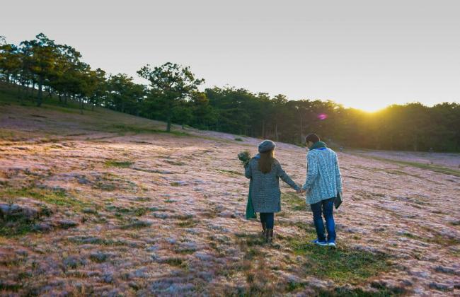 tour du lịch đà lạt mùa cỏ hồng