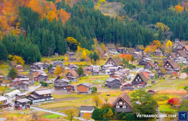 Du lịch Nhật Bản tháng 11