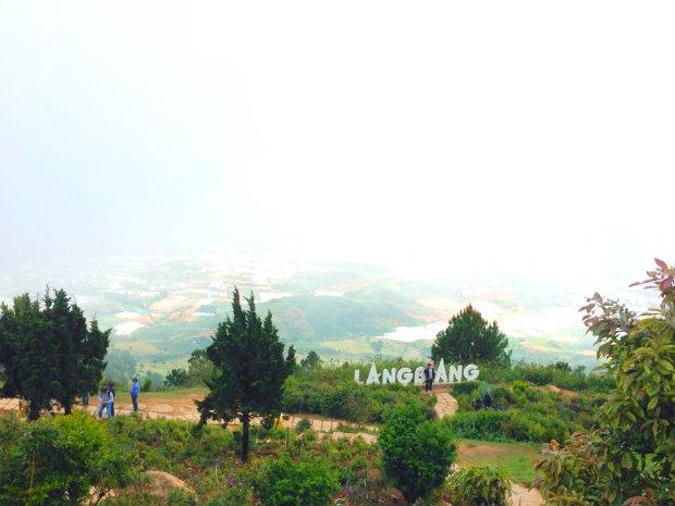 Tour du lịch khám phá mùa thu Đà Lạt 3N3Đ