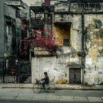 6 lý do để thêm yêu và mong ngóng mùa đông ở Hà Nội