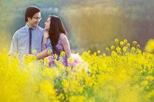Cúc họa mi vừa tàn, Hà Nội đã kịp vào mùa hoa cải vàng đẹp mê mẩn