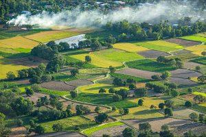 Tour du lịch miền Tây: Về thăm Châu Đốc – An Giang ( 2N1Đ)
