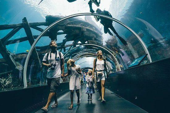 tour du lịch singapore trọn gói 4n3d