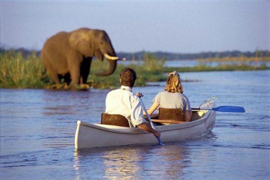 visa đi zimbabwe