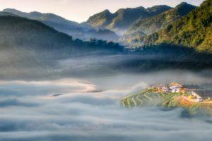 Kinh nghiệm du lịch Malaysia : khám phá cao nguyên xanh Cameron