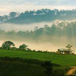Tour du lịch Đà Lạt 3 ngày 2 đêm: Tận hưởng vẻ đẹp thắng cảnh trọn gói