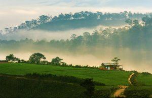 Tour du lịch Đà Lạt: Tham quan các thắng cảnh nổi tiếng nhất Đà Lạt (3N2Đ)
