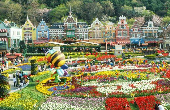 mua tour du lịch Hàn Quốc giá rẻ nhất