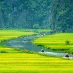 Tour 1 ngày: Thưởng ngoạn thắng cảnh Hoa Lư – Tam Cốc