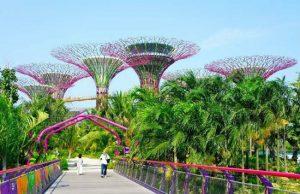 Một hành trình, ba quốc gia: Tour Singapore – Malaysia – Indonesia (6N5Đ)