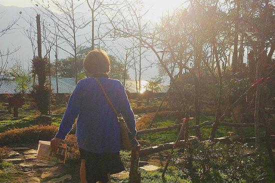 Tour du lịch Đà Nẵng – Hà Nội – Sapa 4N3Đ | Tận hưởng vẻ đẹp ngọt ngào của Sapa