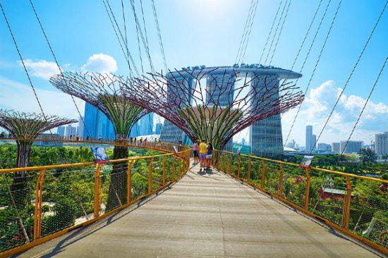 kinh nghiệm đi du lịch singapore theo tour