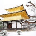 Tìm vé rẻ đi Nhật Bản tháng 2 ngắm vẻ dịu dàng của xứ phù tang