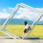 """Sững sờ trước đại lộ lúa vàng trải thảm đẹp """"rụng tim"""" của Đài Loan"""