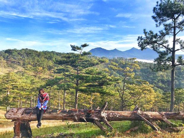 Du lịch Đà Lạt cảm nhận phong cảnh núi rừng hữu tình - du lịch đà lạt 4 ngày 3 đêm