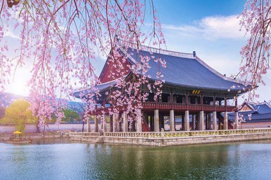 xin cấp visa đi Hàn Quốc