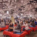 Mua vé rẻ đi Hiroshima tháng 4 – trải nghiệm những lễ hội mùa xuân đặc sắc