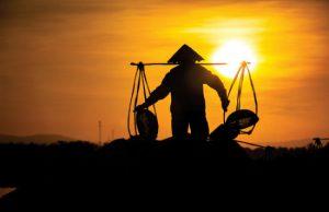 Mãn nhãn trước vẻ đẹp tinh khôi của đồng muối Hòn Khói – Nha Trang