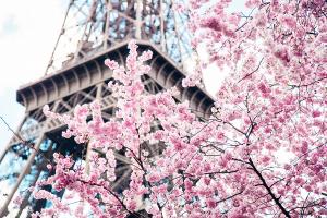 """""""Cập bến"""" Paris ngắm sắc xuân lãng mạn với vé giá rẻ tháng 4"""
