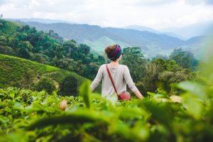 Mua vé máy bay đi Malaysia: Đồi trà cao nguyên, đèn lồng phố cổ