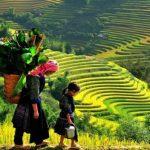 Tour du lịch Hà Nội – Sapa – Hạ Long – Ninh Bình 5N4Đ | Tết miền Bắc Việt Nam