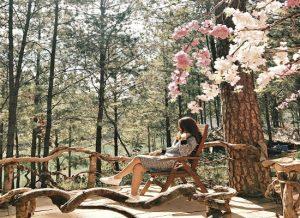 """5 điểm chụp ảnh ở Đà Lạt đẹp như tranh vẽ trong phim """"Tháng năm rực rỡ"""""""