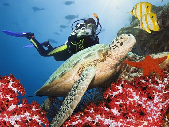 gia phong resort 5 sao o maldives