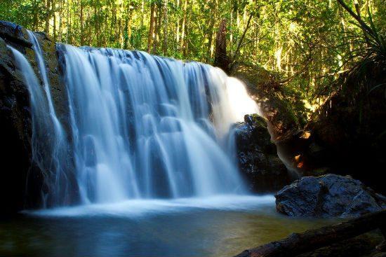 Tắm suối Tranh