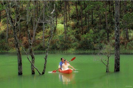 Ngao du Hồ Tuyền Lâm