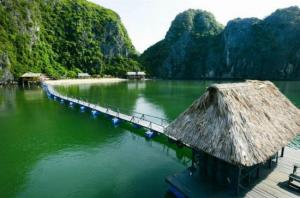 Làm gì khi giá vé máy bay Vietjet Air Sài Gòn đi Hải Phòng chỉ từ 599,000 VNĐ