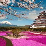 Kinh nghiệm du lịch bụi Nhật Bản