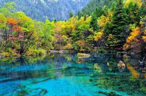 Du lịch Trung Quốc: Cửu Trại Câu – Hoàng Long – Nga Mi – Thành Đô 8N7Đ