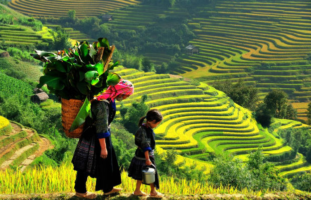 Lào Cai là điểm hẹn du lịch của nhiều du khách