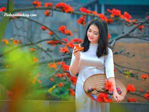 Tour du lịch Hà Nội mùa hoa gạo: Khám phá nét cổ kính của vùng đất thủ đô (1 ngày)