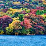 Du lịch Nhật Bản 4N3Đ | Tokyo | Hakone | Núi Phú Sĩ