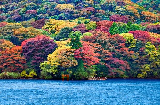 Du lịch Nhật Bản 4N3Đ   Tokyo   Hakone   Núi Phú Sĩ