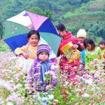 """Du lịch Hà Giang – Bí kíp chinh phục """"con đường hạnh phúc"""" giữa núi đồi Tây Bắc"""