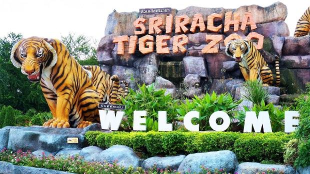 Tour du lịch Thái Lan đặc sắc 5N4Đ | Bangkok | Pattaya – Tặng vé massage Thái