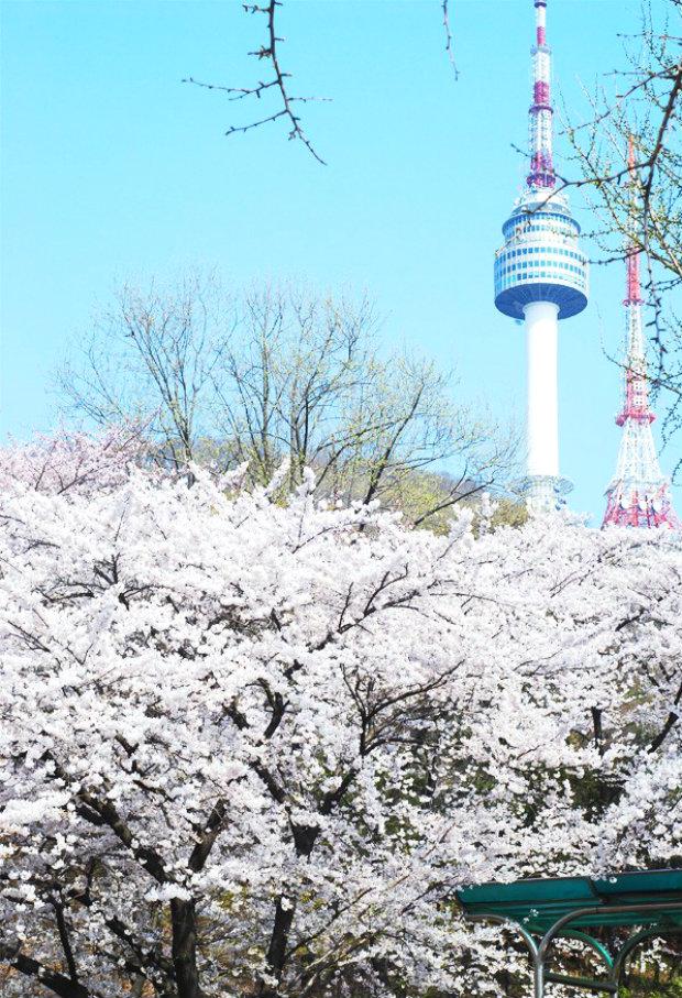 Tour du lịch Hàn Quốc 5 ngày 4 đêm – Lãng mạn xứ sở kim chi