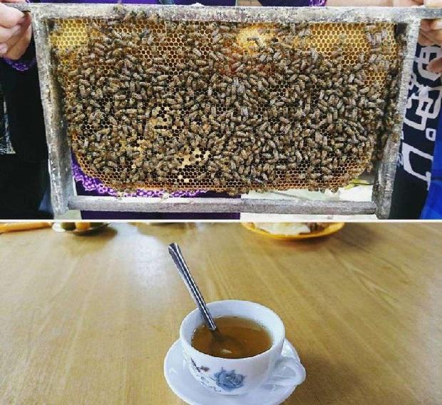 Thưởng thức trà mật ong, độc đáo xứ miệt vườn