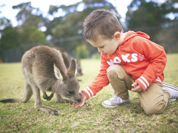 Tour du lịch nước Úc xinh đẹp – 5 ngày 4 đêm khám phá thành phố Sydney | Canberra
