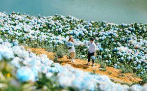 Dọc miền đất nước chiêm ngưỡng cảnh đẹp Việt Nam