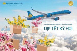 Quy định vận chuyến mai, đào Vietnam Airlines và Jetstar trong dịp Tết Nguyên Đán 2019